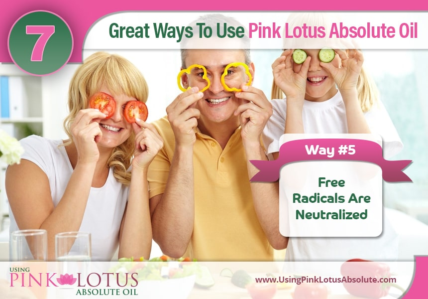 pink lotus absolute essential oil for skin care